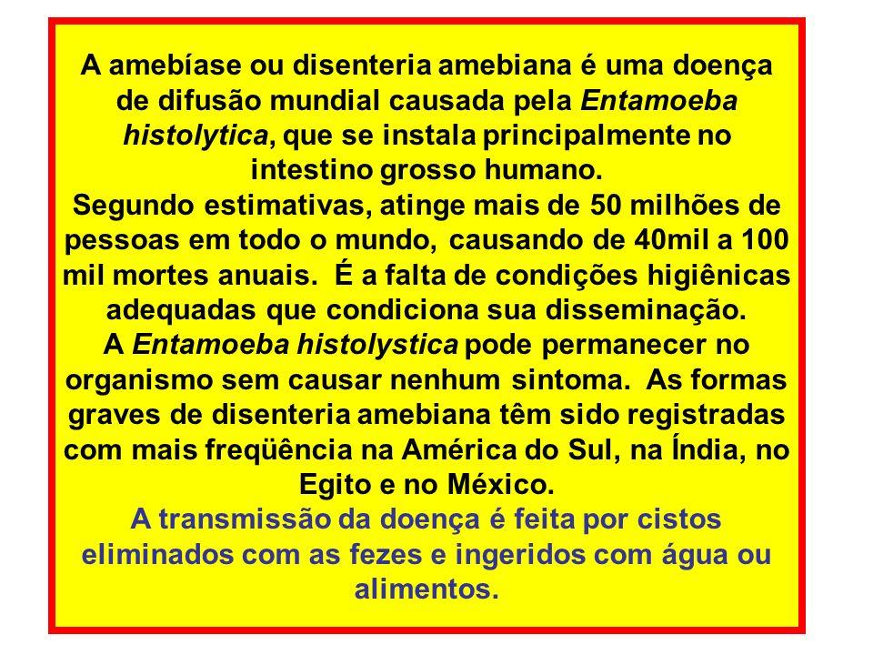 A amebíase ou disenteria amebiana é uma doença de difusão mundial causada pela Entamoeba histolytica, que se instala principalmente no intestino grosso humano.