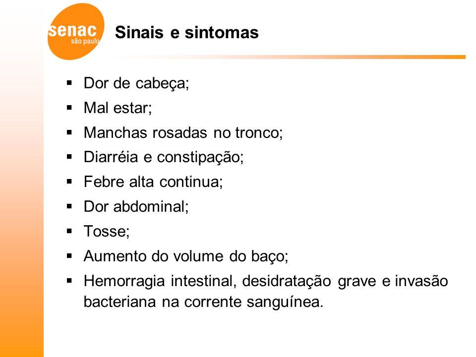 Sinais e sintomas Dor de cabeça; Mal estar; Manchas rosadas no tronco;