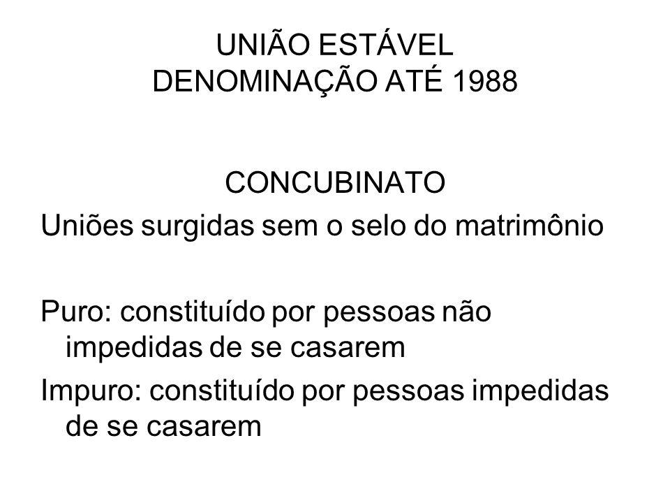 UNIÃO ESTÁVEL DENOMINAÇÃO ATÉ 1988