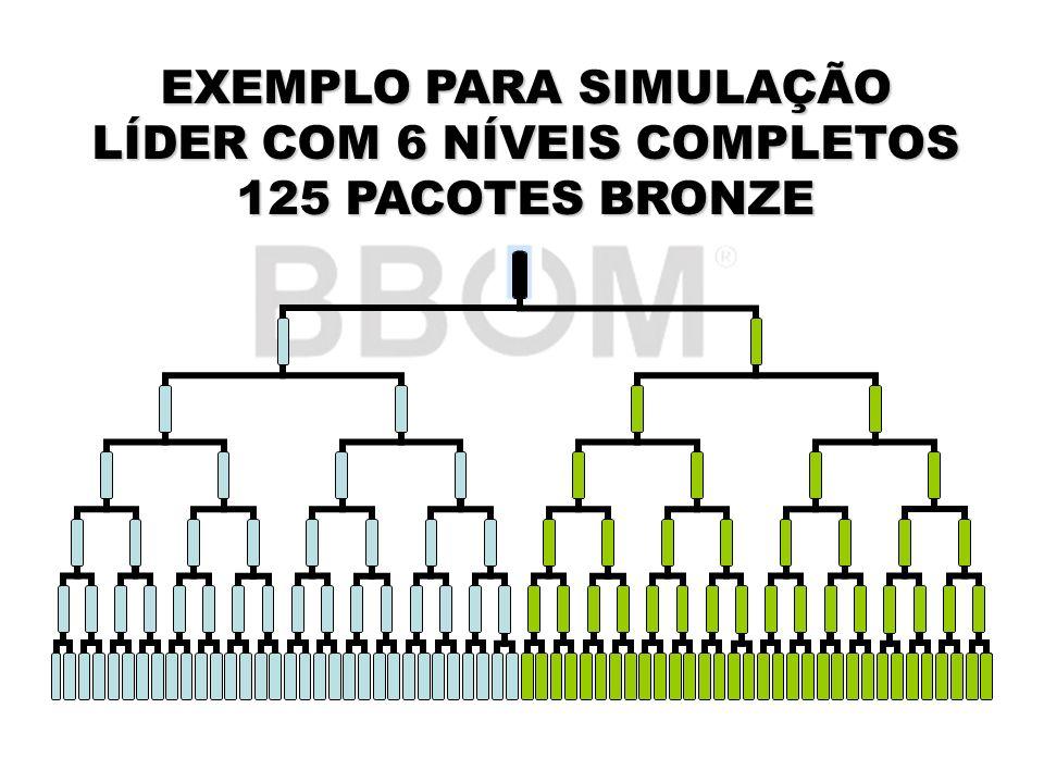 EXEMPLO PARA SIMULAÇÃO LÍDER COM 6 NÍVEIS COMPLETOS 125 PACOTES BRONZE