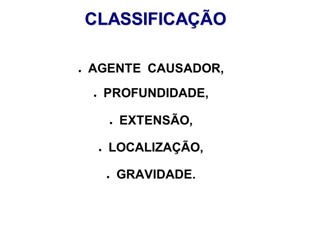 CLASSIFICAÇÃO AGENTE CAUSADOR, PROFUNDIDADE, EXTENSÃO, LOCALIZAÇÃO,
