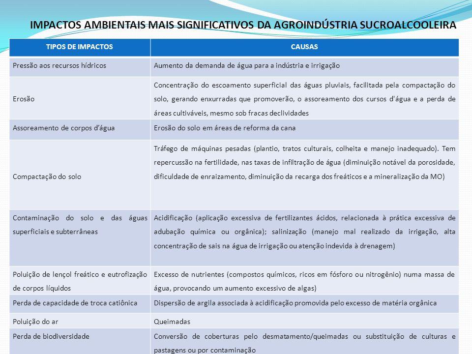 IMPACTOS AMBIENTAIS MAIS SIGNIFICATIVOS DA AGROINDÚSTRIA SUCROALCOOLEIRA