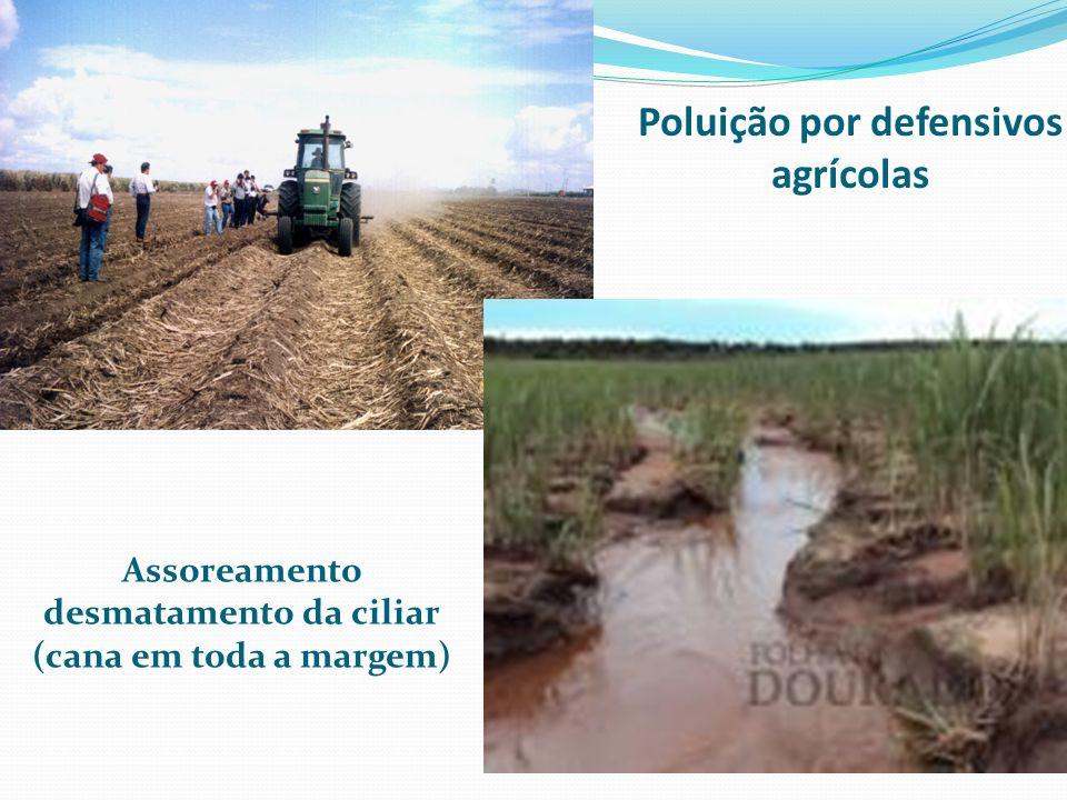 Poluição por defensivos agrícolas