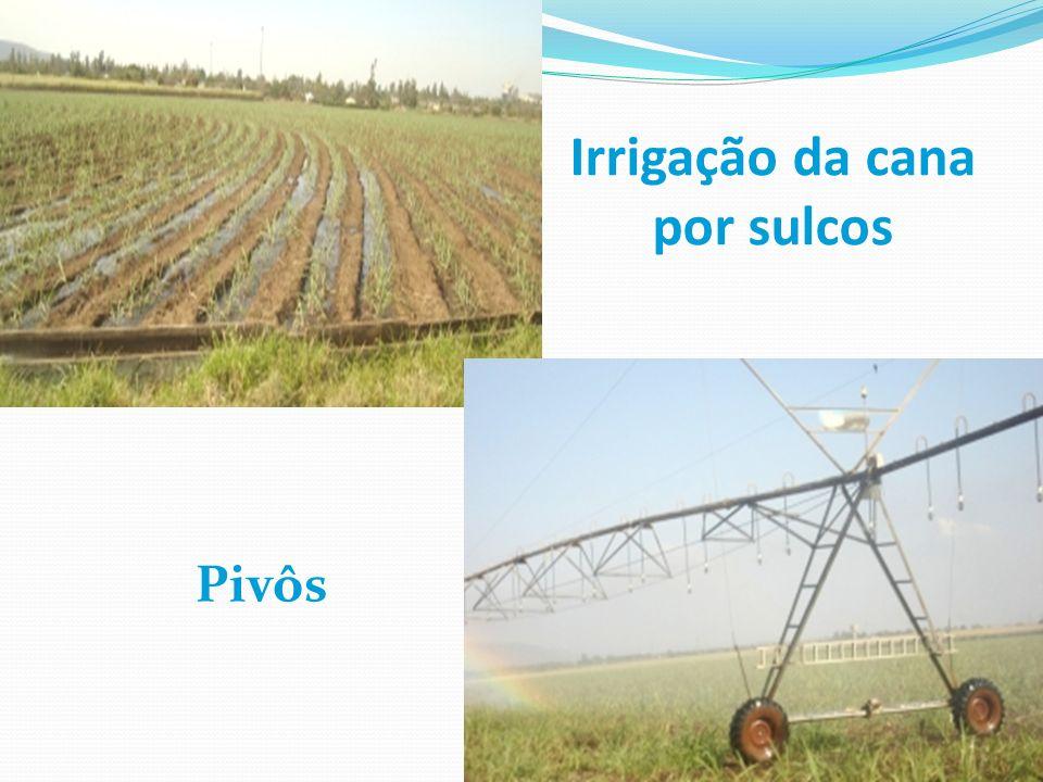 Irrigação da cana por sulcos