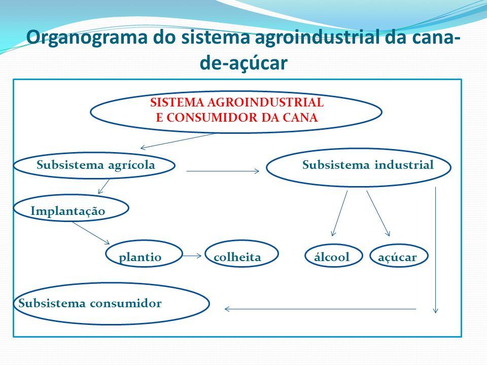 Organograma do sistema agroindustrial da cana-de-açúcar