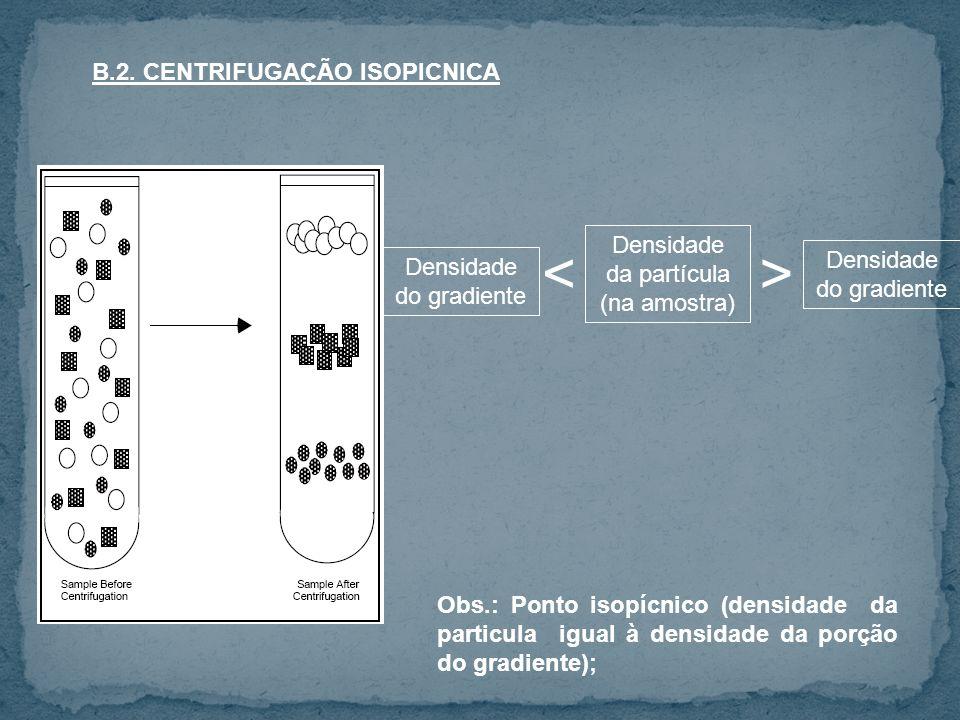 < > B.2. CENTRIFUGAÇÃO ISOPICNICA Densidade da partícula
