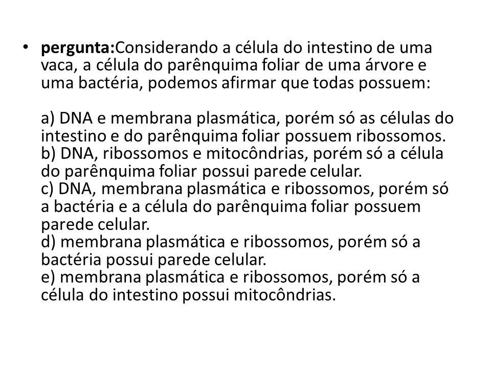 pergunta:Considerando a célula do intestino de uma vaca, a célula do parênquima foliar de uma árvore e uma bactéria, podemos afirmar que todas possuem: a) DNA e membrana plasmática, porém só as células do intestino e do parênquima foliar possuem ribossomos. b) DNA, ribossomos e mitocôndrias, porém só a célula do parênquima foliar possui parede celular. c) DNA, membrana plasmática e ribossomos, porém só a bactéria e a célula do parênquima foliar possuem parede celular. d) membrana plasmática e ribossomos, porém só a bactéria possui parede celular. e) membrana plasmática e ribossomos, porém só a célula do intestino possui mitocôndrias.