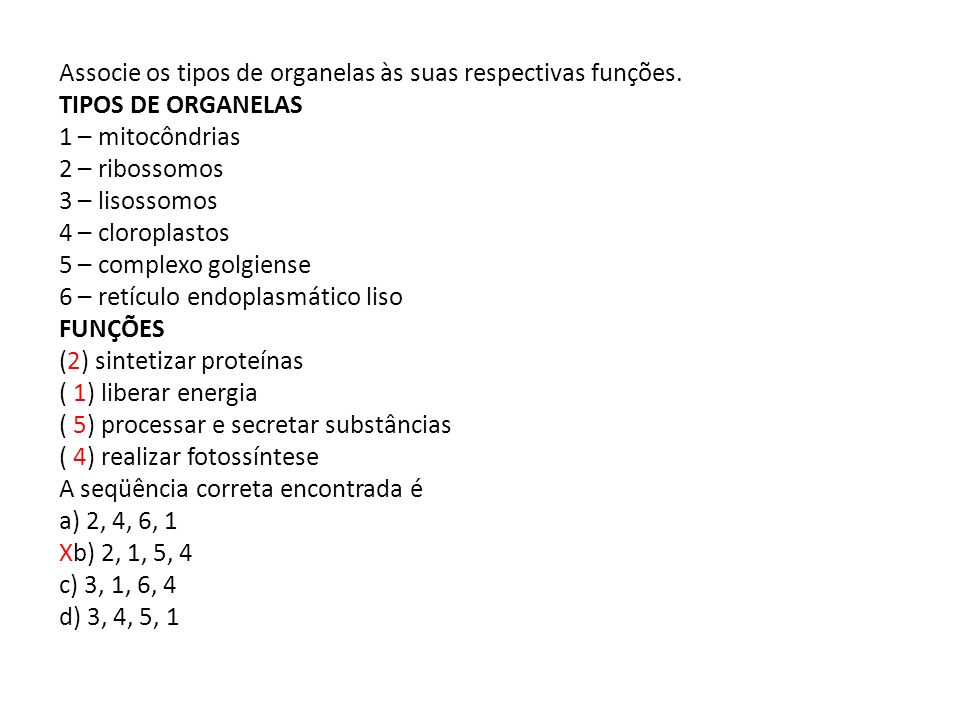 Associe os tipos de organelas às suas respectivas funções