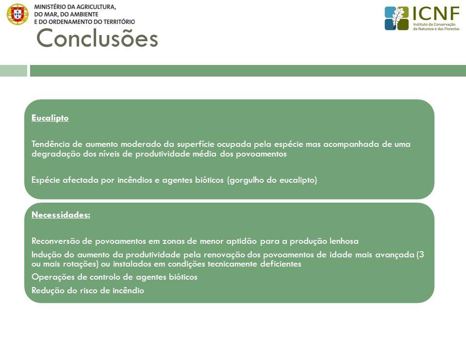 Conclusões Espécie afectada por incêndios e agentes bióticos (gorgulho do eucalipto)