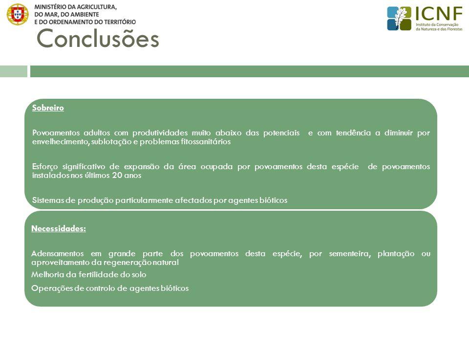 Conclusões Sobreiro.