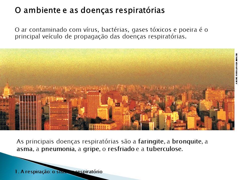 O ambiente e as doenças respiratórias
