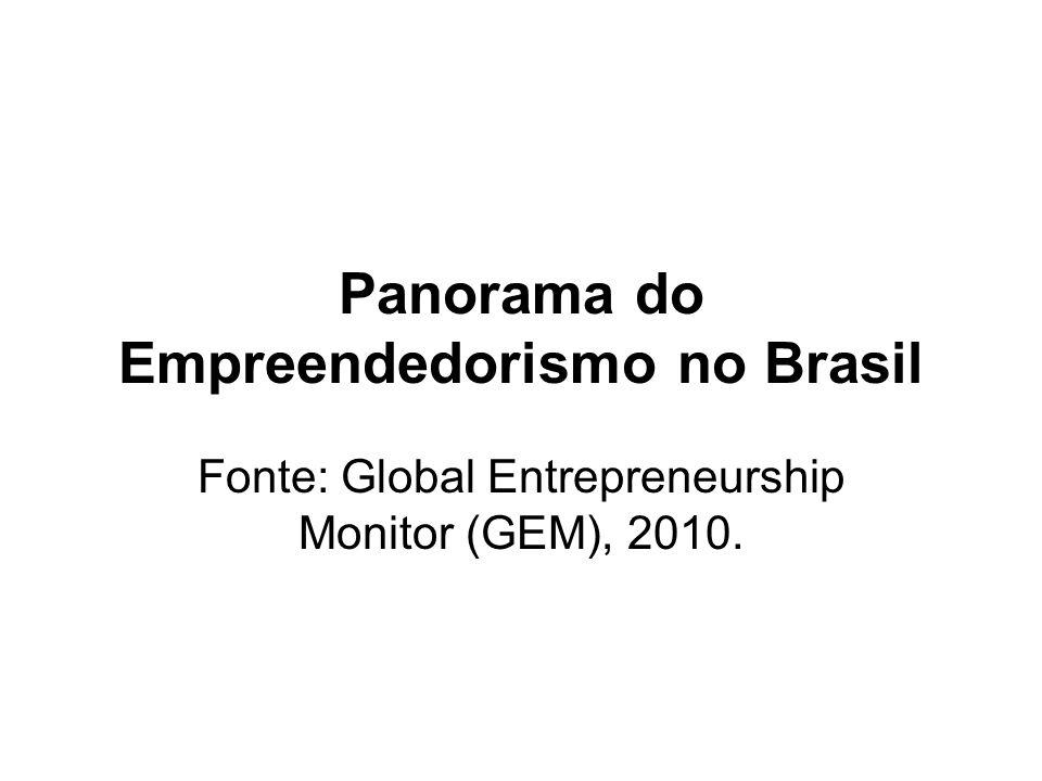 Panorama do Empreendedorismo no Brasil