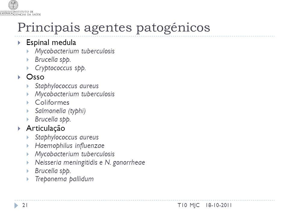 Principais agentes patogénicos