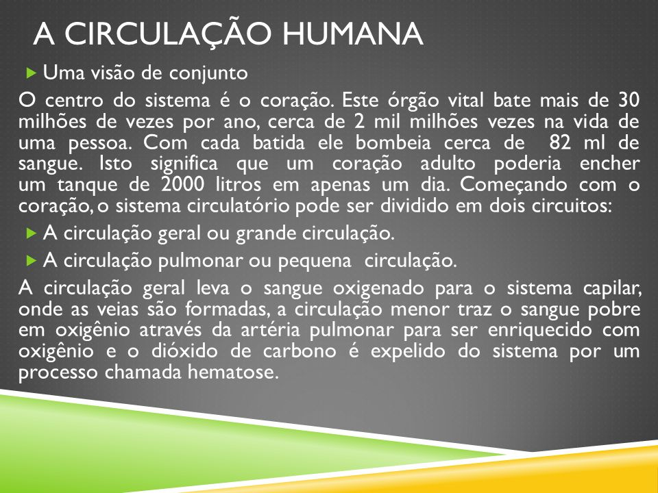 A CIRCULAÇÃO HUMANA Uma visão de conjunto