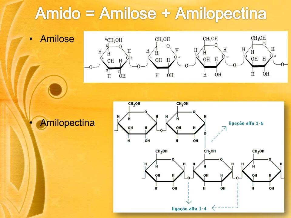 Amido = Amilose + Amilopectina