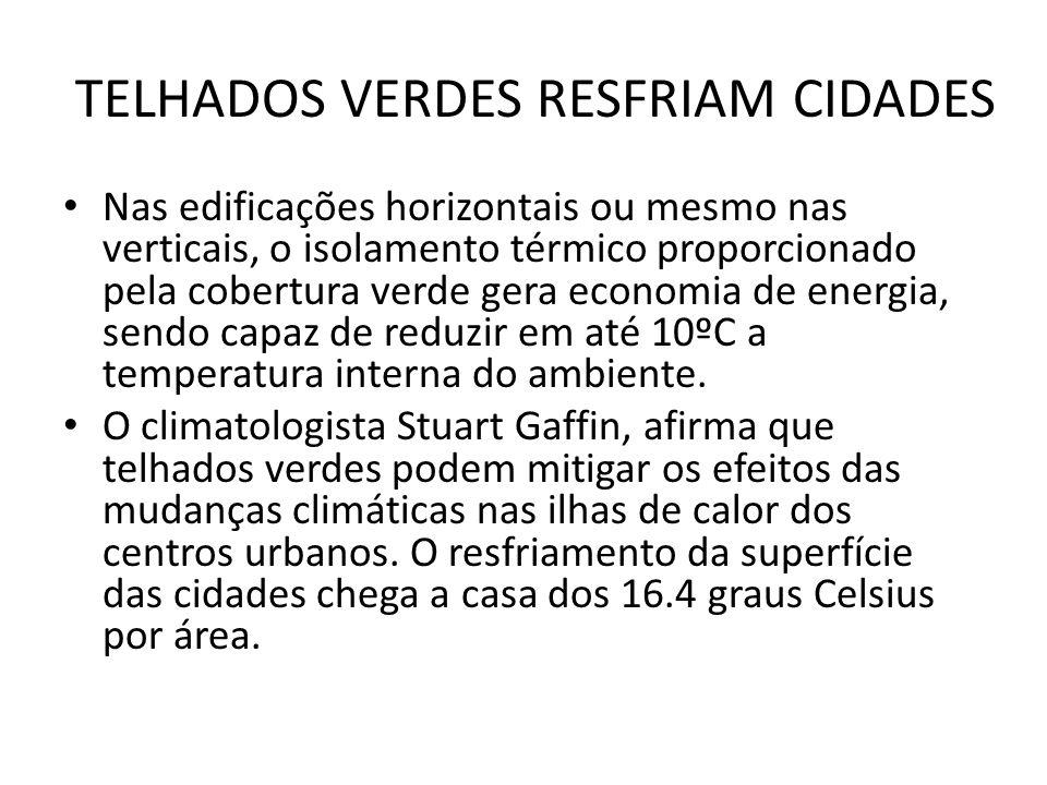 TELHADOS VERDES RESFRIAM CIDADES
