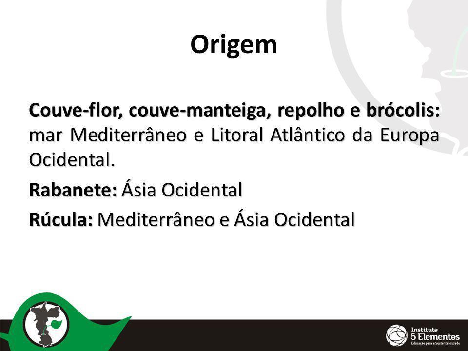 Origem Couve-flor, couve-manteiga, repolho e brócolis: mar Mediterrâneo e Litoral Atlântico da Europa Ocidental.