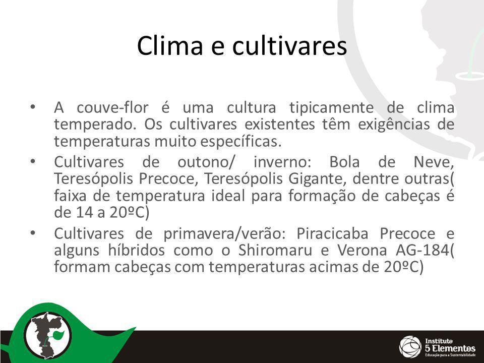 Clima e cultivares