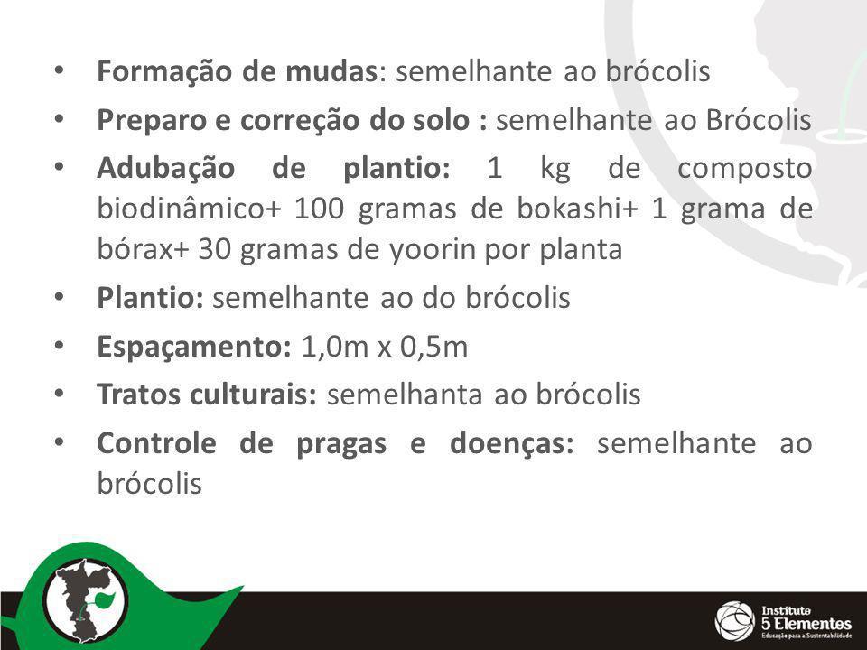 Formação de mudas: semelhante ao brócolis