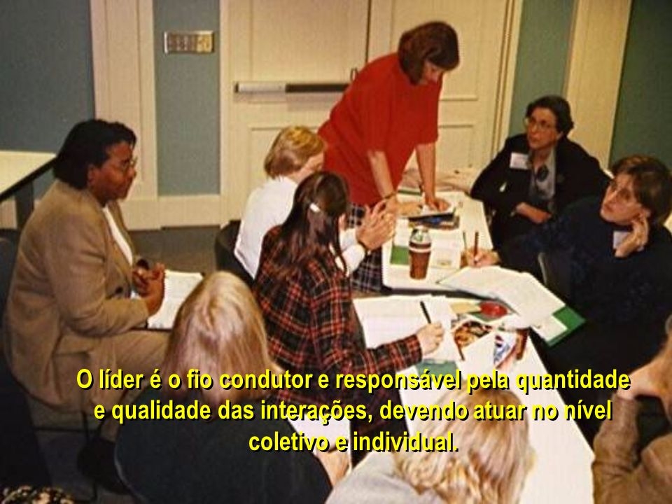 O líder é o fio condutor e responsável pela quantidade e qualidade das interações, devendo atuar no nível coletivo e individual.