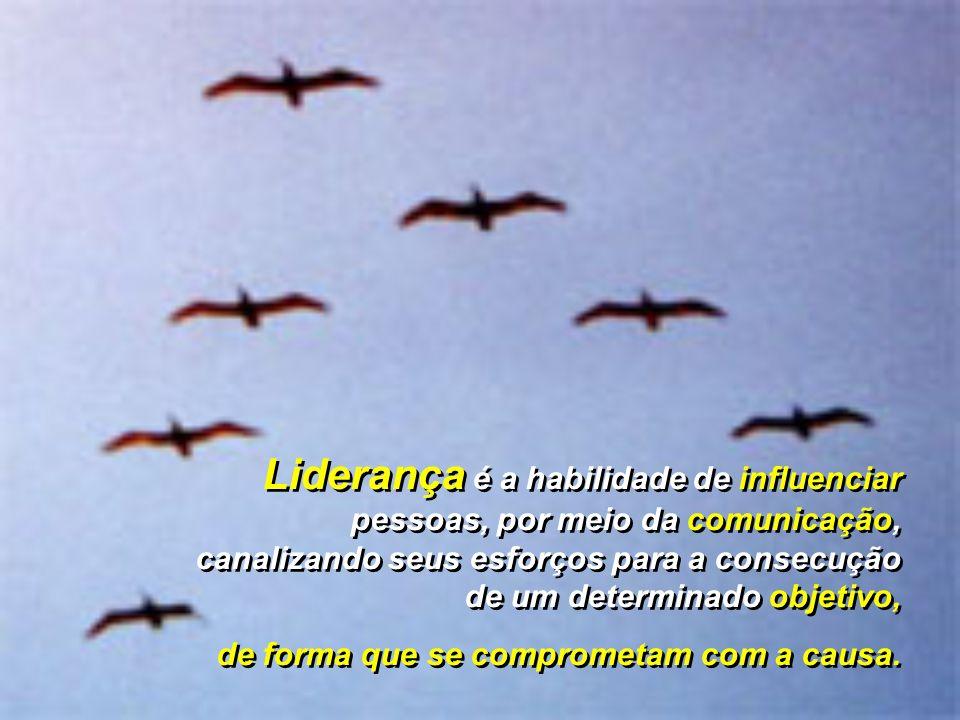 Liderança é a habilidade de influenciar pessoas, por meio da comunicação, canalizando seus esforços para a consecução de um determinado objetivo,