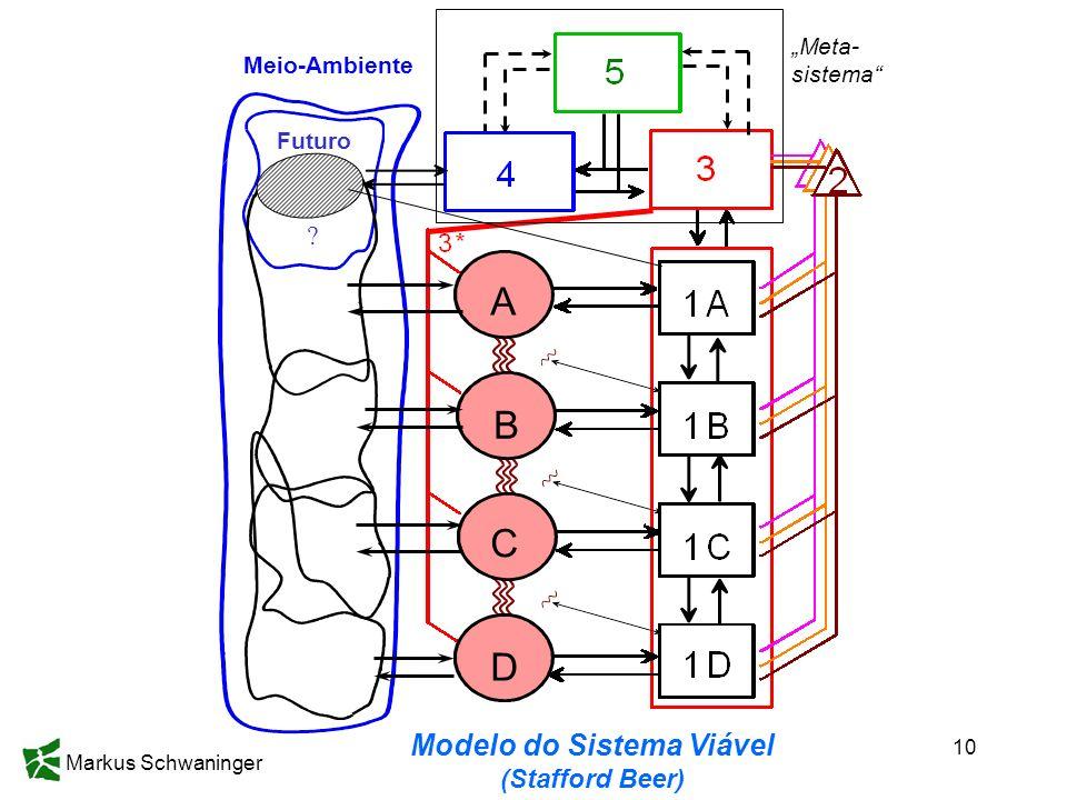 Modelo do Sistema Viável