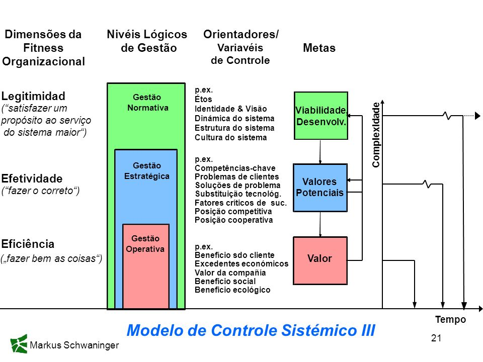 Dimensões da Fitness Organizacional Modelo de Controle Sistémico III