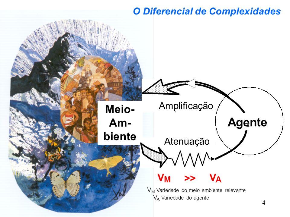 VM Variedade do meio ambiente relevante