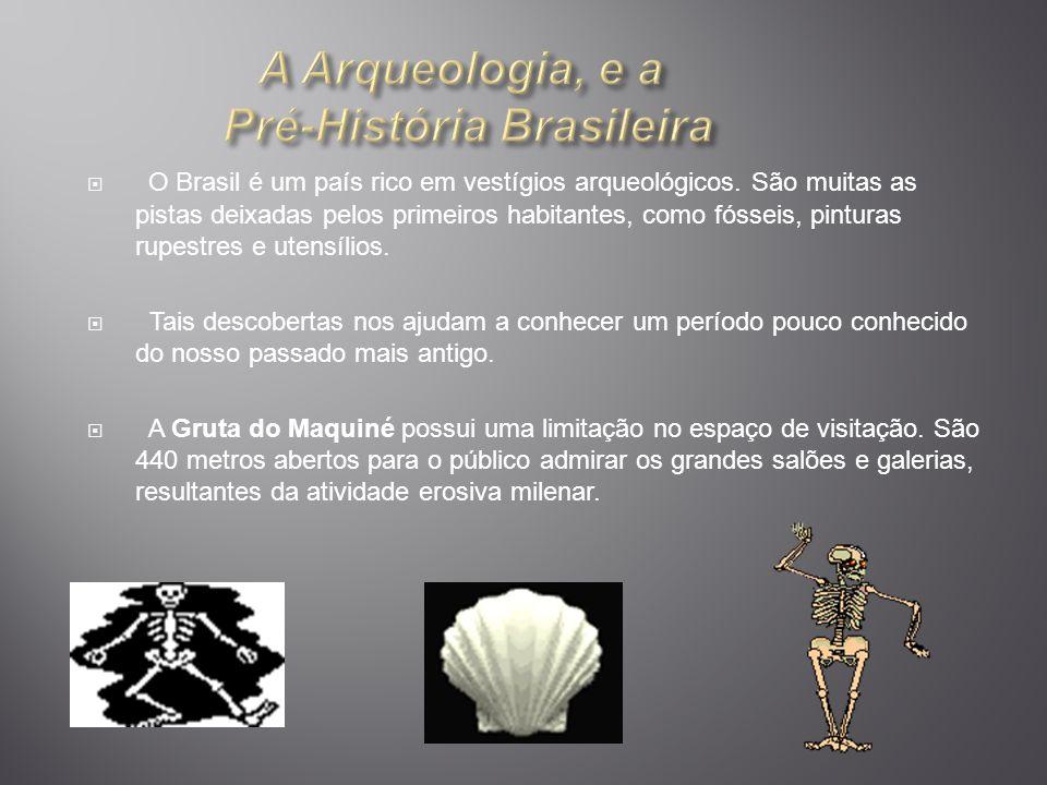 A Arqueologia, e a Pré-História Brasileira