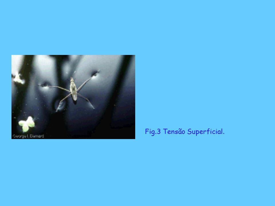 Fig.3 Tensão Superficial.