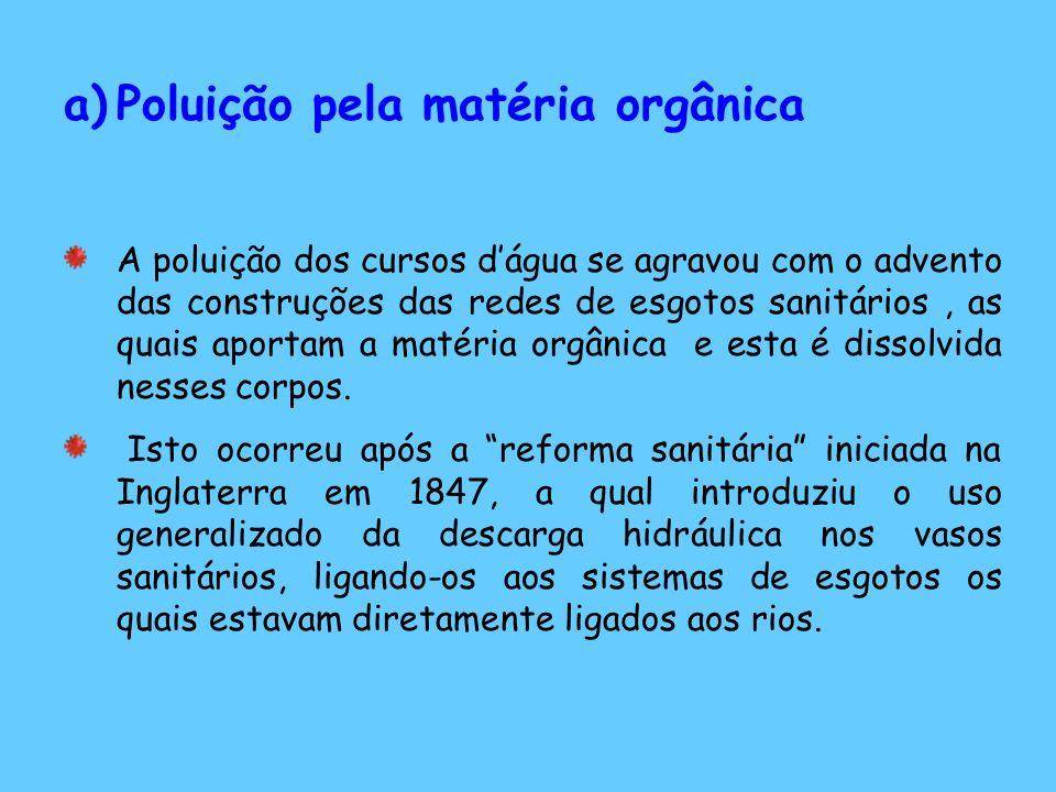 Poluição pela matéria orgânica