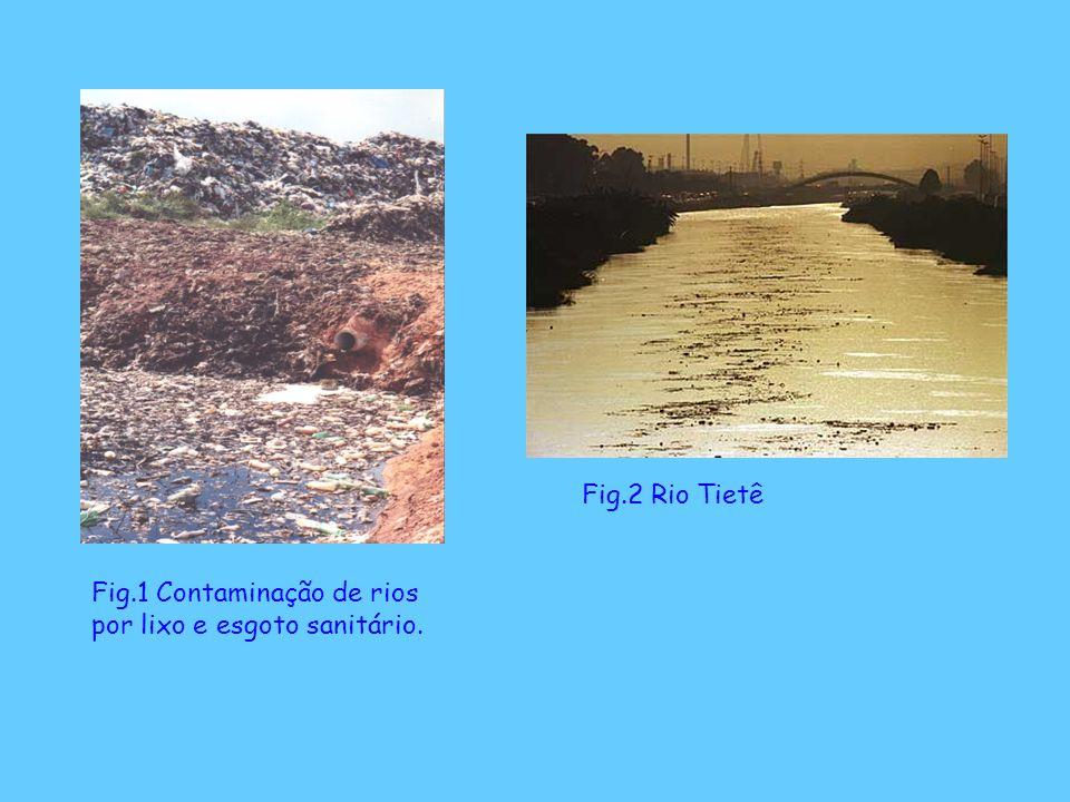 Fig.2 Rio Tietê Fig.1 Contaminação de rios por lixo e esgoto sanitário.