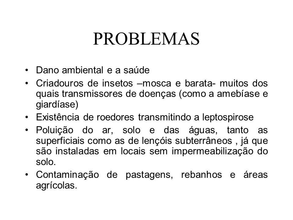 PROBLEMAS Dano ambiental e a saúde