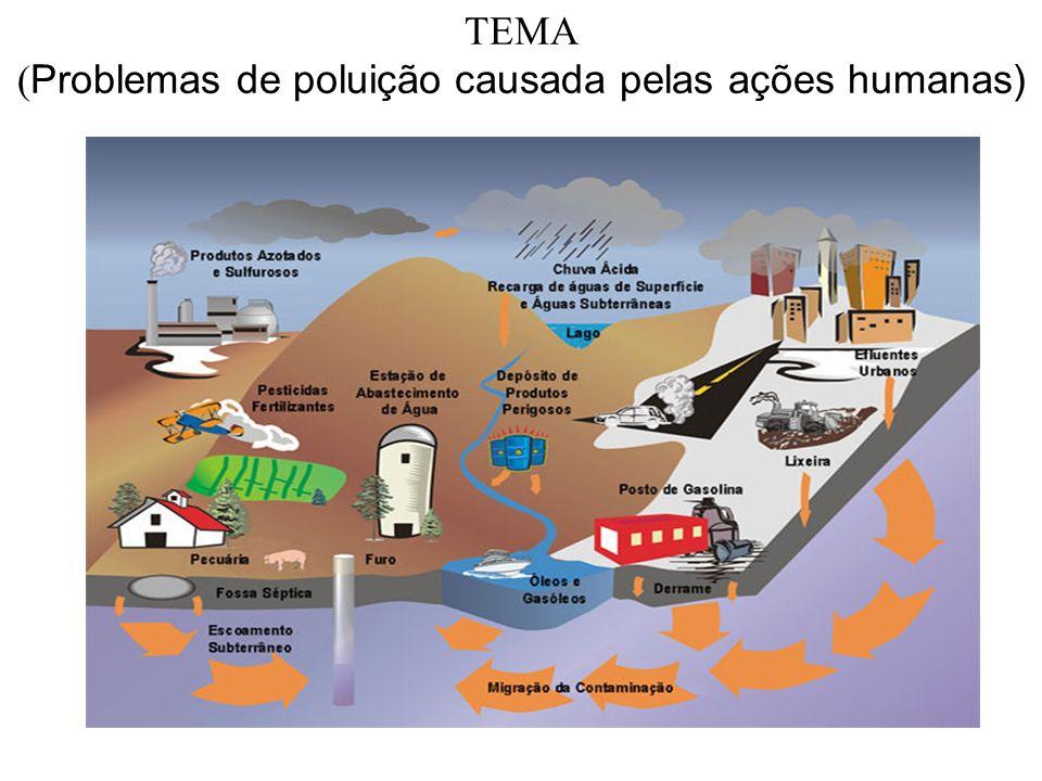TEMA (Problemas de poluição causada pelas ações humanas)