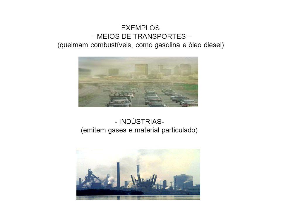 (emitem gases e material particulado)