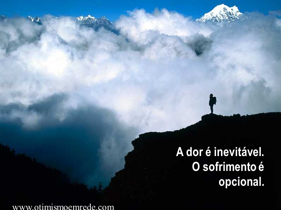 A dor é inevitável. O sofrimento é opcional.