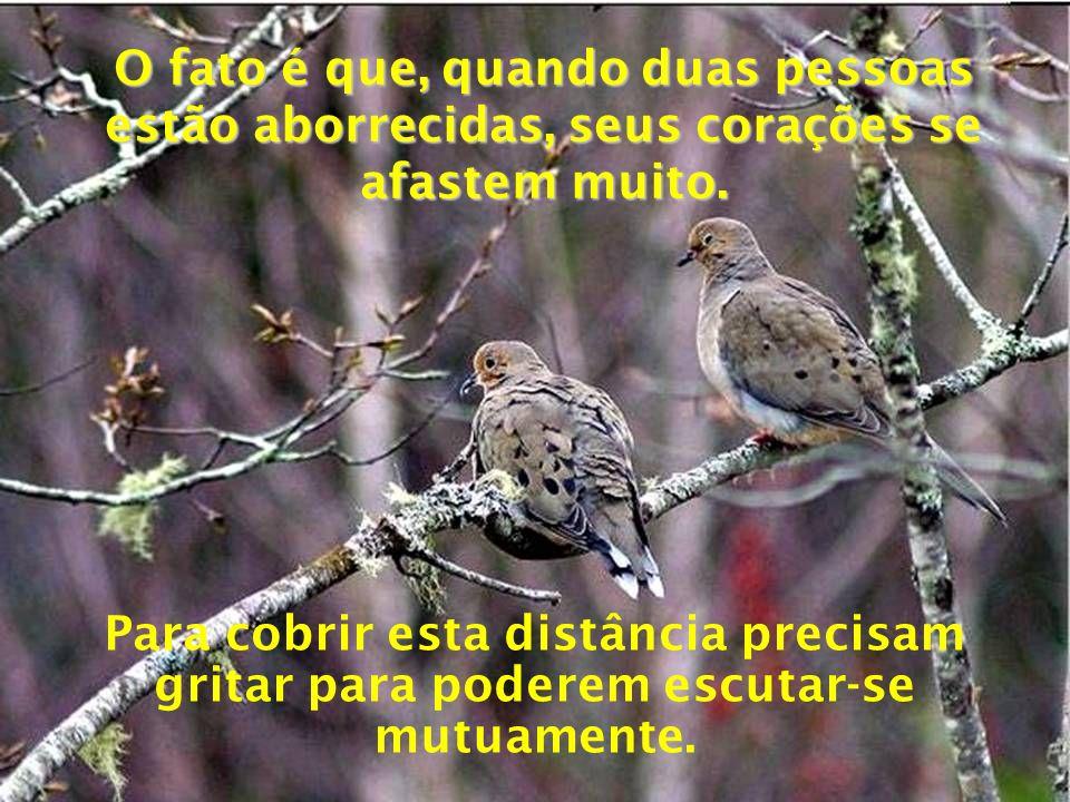 O fato é que, quando duas pessoas estão aborrecidas, seus corações se afastem muito.