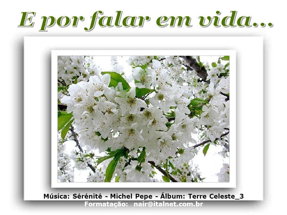 E por falar em vida... Música: Sérénité - Michel Pepe - Álbum: Terre Celeste_3.