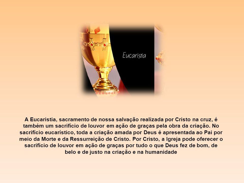 A Eucaristia, sacramento de nossa salvação realizada por Cristo na cruz, é também um sacrifício de louvor em ação de graças pela obra da criação.