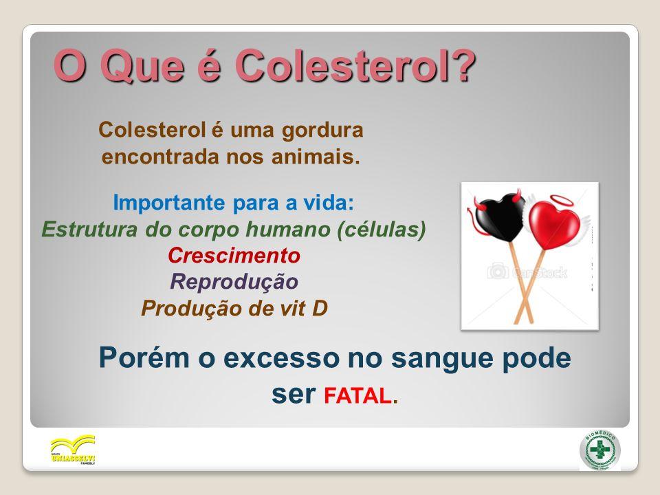 O Que é Colesterol Porém o excesso no sangue pode ser FATAL.