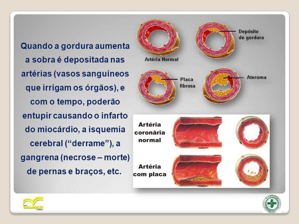 Quando a gordura aumenta a sobra é depositada nas artérias (vasos sanguíneos que irrigam os órgãos), e com o tempo, poderão entupir causando o infarto do miocárdio, a isquemia cerebral ( derrame ), a gangrena (necrose – morte) de pernas e braços, etc.