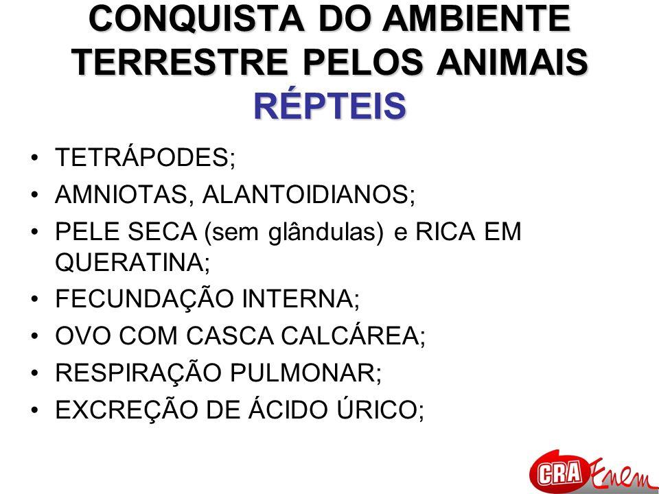 CONQUISTA DO AMBIENTE TERRESTRE PELOS ANIMAIS RÉPTEIS