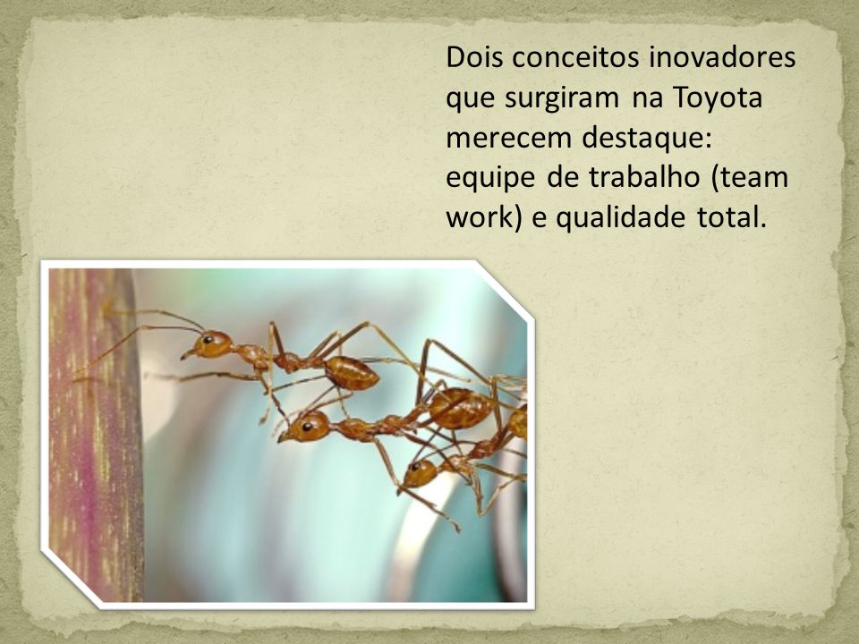 Dois conceitos inovadores que surgiram na Toyota merecem destaque: equipe de trabalho (team work) e qualidade total.