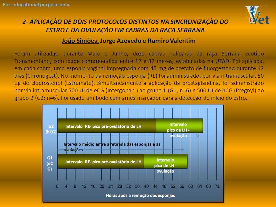 João Simões, Jorge Azevedo e Ramiro Valentim