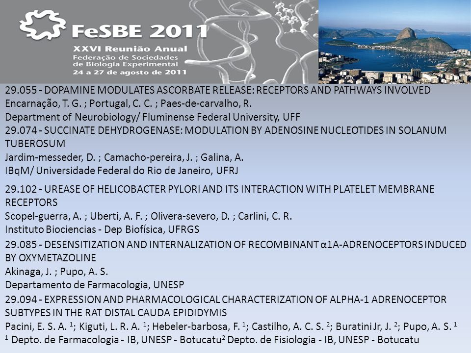 29.055 - DOPAMINE MODULATES ASCORBATE RELEASE: RECEPTORS AND PATHWAYS INVOLVED Encarnação, T. G. ; Portugal, C. C. ; Paes-de-carvalho, R. Department of Neurobiology/ Fluminense Federal University, UFF