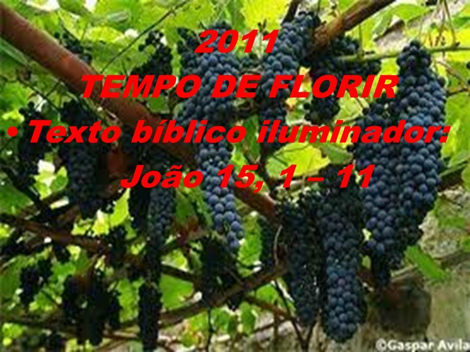 2011 TEMPO DE FLORIR Texto bíblico iluminador: João 15, 1 – 11