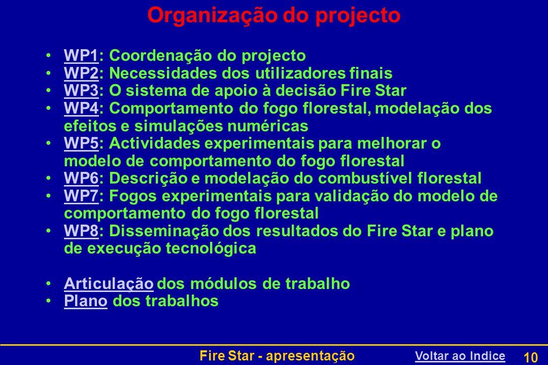 Organização do projecto