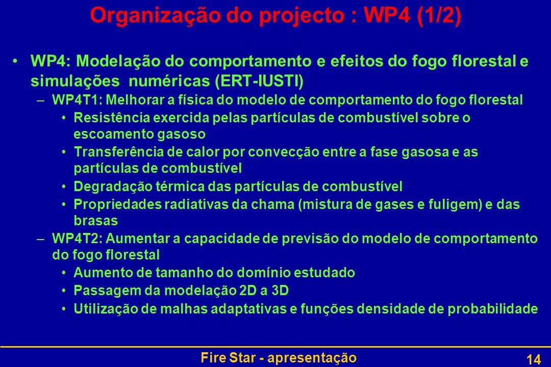Organização do projecto : WP4 (1/2)