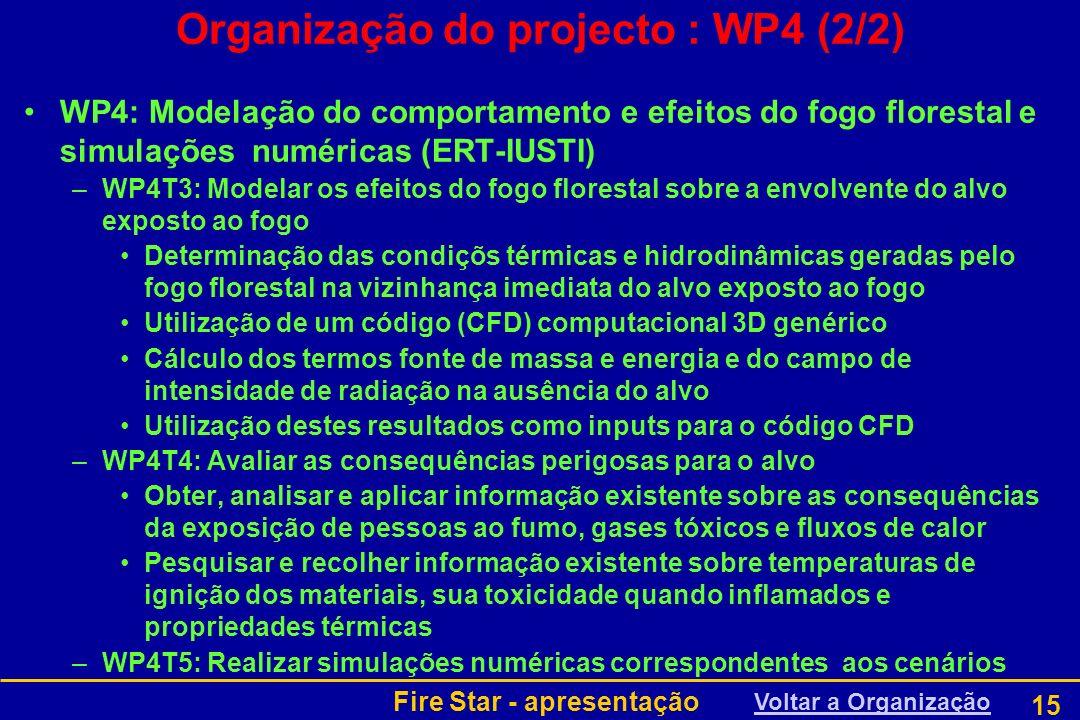 Organização do projecto : WP4 (2/2)