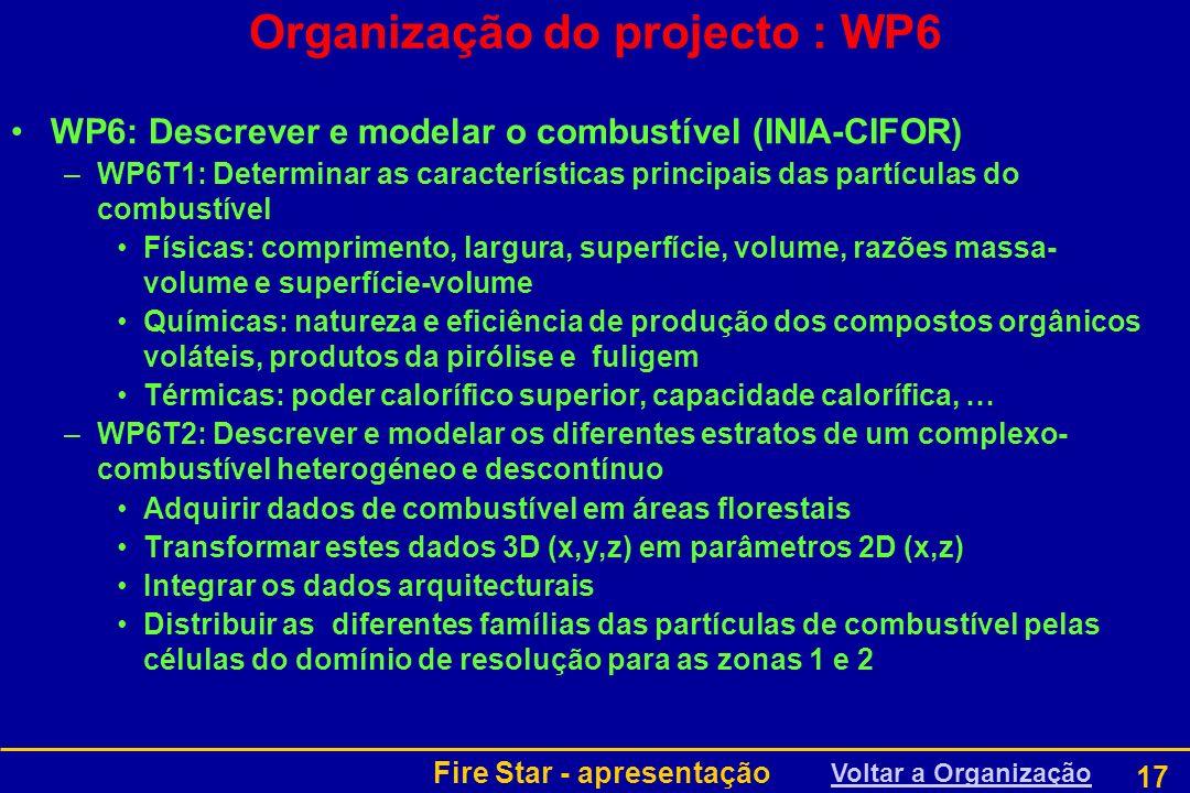 Organização do projecto : WP6